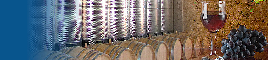 Wine-making facilities winery equipment Treviso Veneto - header